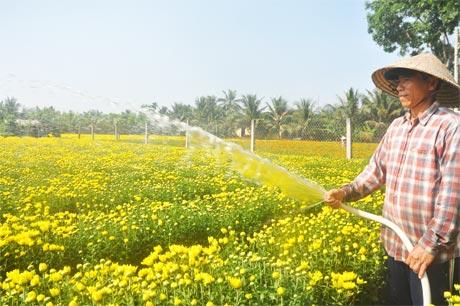 Ông Trương Văn Nhung tranh thủ tưới hoa.