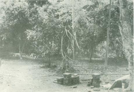 Xóm Dầu (Phường 3, TP. Mỹ Tho) là địa điểm họp để thành lập chi bộ sớm nhất của TP. Mỹ Tho. Ảnh: Tư liệu