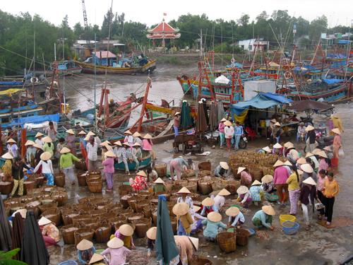 Một góc cảng cá Vàm Láng. Ảnh: Nguyễn Hữu