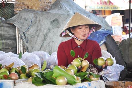 Đặc sản vú sữa Lò Rèn được người tiêu dùng trong và ngoài nước ưa chuộng. Ảnh: Minh Châu