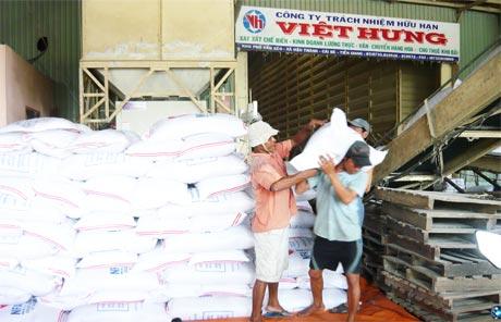 Gạo là mặt hàng xuất khẩu chủ yếu của Tiền Giang (ảnh chụp tại Công ty TNHH Việt Hưng, Cái Bè).