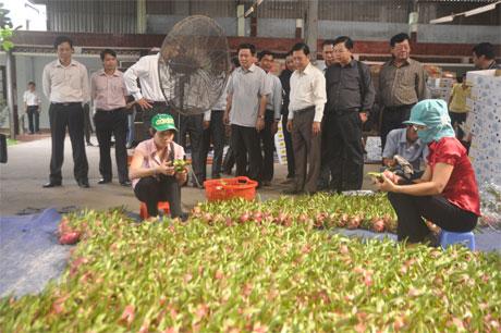 Ông Vương Đình Huệ và các đại biểu tham quan Công ty cổ phần Rau quả Tiền Giang.