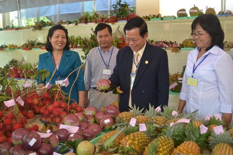 Lãnh đạo tỉnh Tiền Giang tham quan Hội thi Trái ngon trong khuôn khổ MDEC-Tiền Giang 2012.