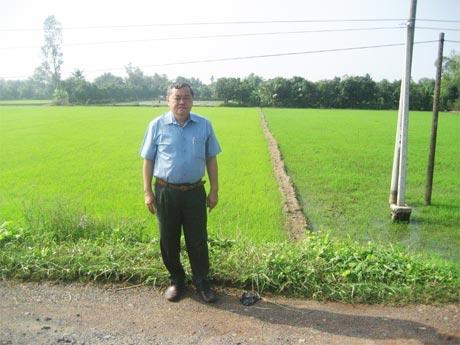 Tác giả thăm ruộng lúa vừa mới gieo sạ.