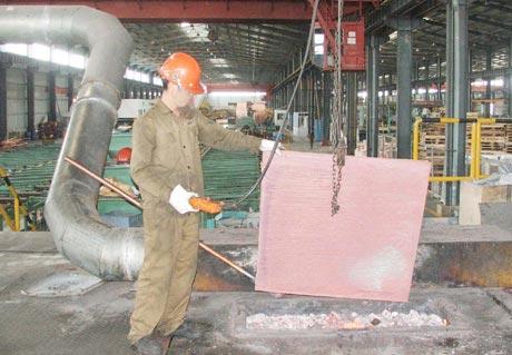 Công ty TNHH Gia công Đồng Hải Lượng là một trong những dự án đầu tư phát huy được hiệu quả tại KCN Long Giang.