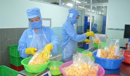 Xoài đông lạnh của Công ty TNHH MTV Long Uyên vừa được UBND tỉnh công nhận là sản phẩm công nghiệp nông thôn tiêu biểu.