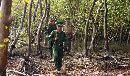 Lực lượng BĐBP tuần tra, bảo vệ rừng phòng hộ trên cồn Ngang. Ảnh: N.HỮU