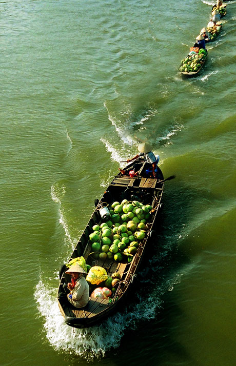 Hình ảnh ra chợ trên sông tại Chợ Nổi Cái Bè.