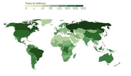 Bản đồ minh họa số lượng cây xanh ở các quốc gia trên thế giới tính theo đơn vị tỷ. Ảnh: Nature.