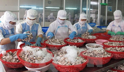 Xuất khẩu của Việt Nam ngày càng tăng cao. Nguồn: TTXVN