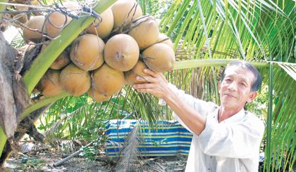 Ông Trần Văn Nhâm bên thành quả lao động của mình.