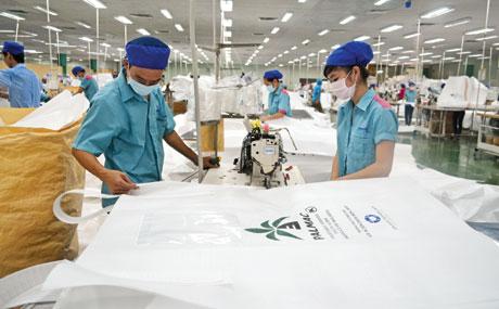Dây chuyền sản xuất của Công ty TNHH Minh Hưng Tiền Giang.