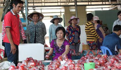 Chị Nguyễn Thị Thủy đang thu mua mận An Phước của nhà vườn đem tới vựa bán.