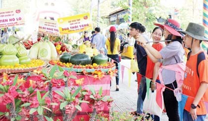 Southern fruit festival 2017 opened