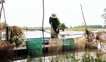 Mekong floods likely to arrive early this year