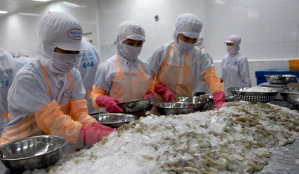 Shrimp exporters told to improve methods