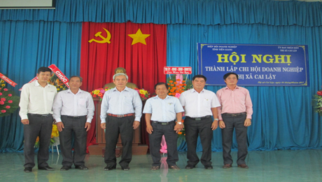 Cai Lay town branch of Business Association established