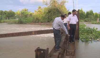 Department of Agricuure and Rural Development inspects the flood and tide prevention activity