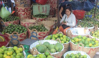 Nguồn cung hạn chế là nguyên nhân chính khiến giá trái cây vẫn còn cao.
