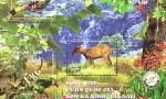 New stamp issued featuring animals at Kon Ka Kinh National Park