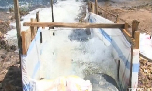 Water pumps is operated to remove water for preventing pineapple flooding. Photo: thtg.vn