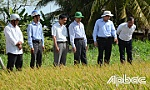 Chairman of the PPC Le Van Huong checks the work of combating drought and salinity