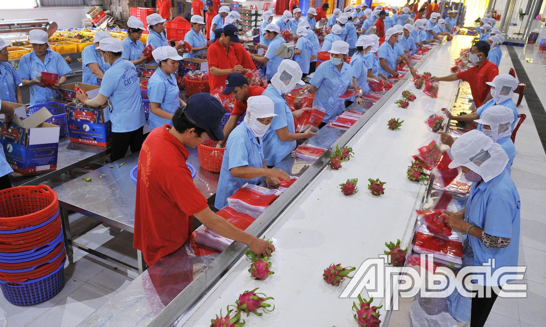Thông qua chuỗi liên kết giá trị nông sản Việt đã được nâng cao, xuất khẩu đến gần 190 nước và vùng lãnh thổ  trên thế giới.                Ảnh: CAO LẬP ĐỨC