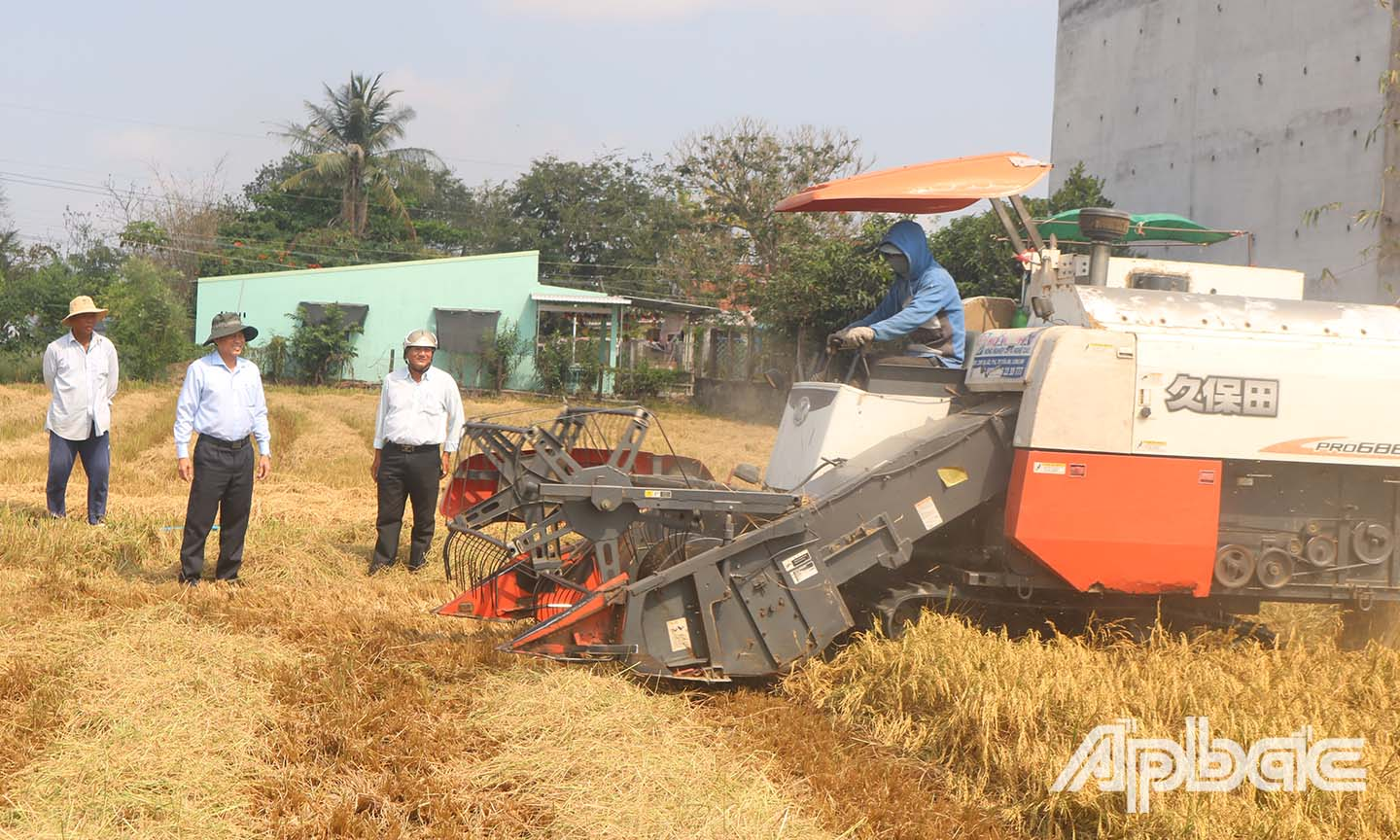 Chairman of the PPC Le Van Huong surveys the harvest of rice in the eastern region